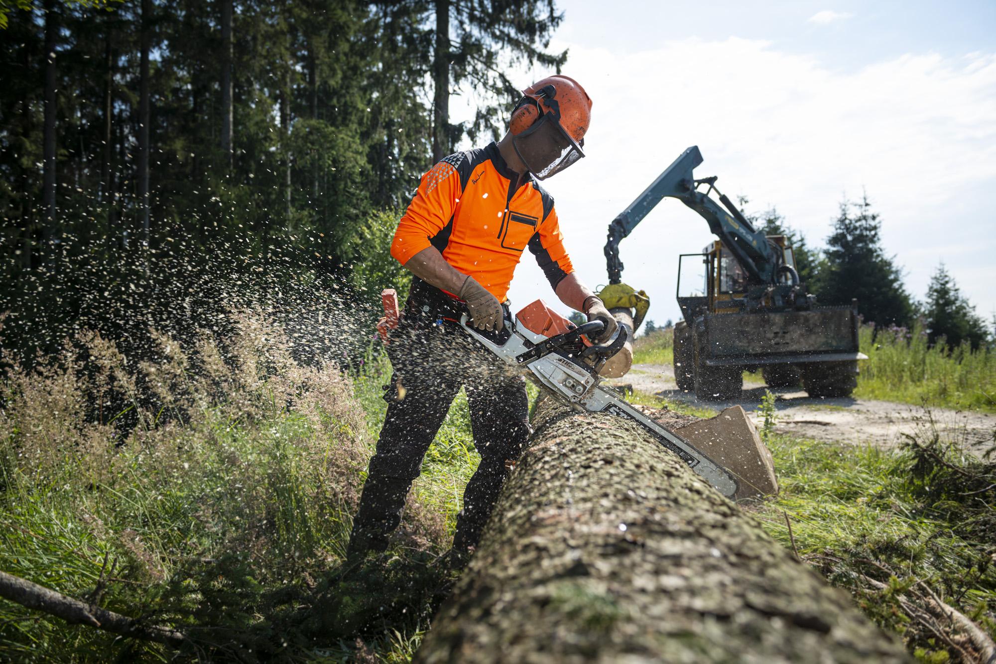 Baumpflege Buffler Holzernte